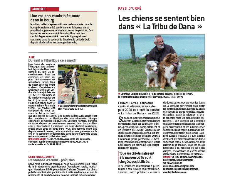 article dans le progrès sur l'élevage de chien de laurent loizzo éducateur canin