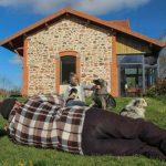 anne Loizzo avec un chio dans les bras et un altdeutscher schäferhund edux bergers australiens couchés dans l'herbe
