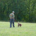 élevage de chien acheter un chien éduqué