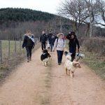 éducation canine éduquer son chien