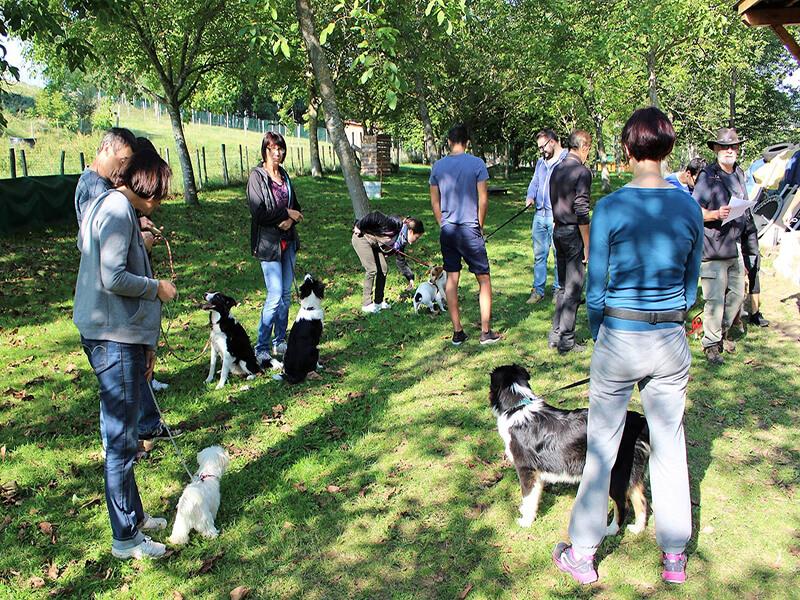 Maîtres et chiens de l'Ecole du Chiot - Tribu de Dana - éducateur canin-